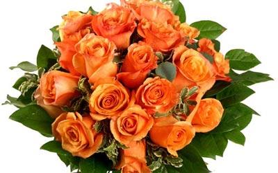 Ramo de rosas naranjas